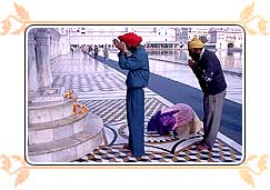 Sikh Pilgrims Praying